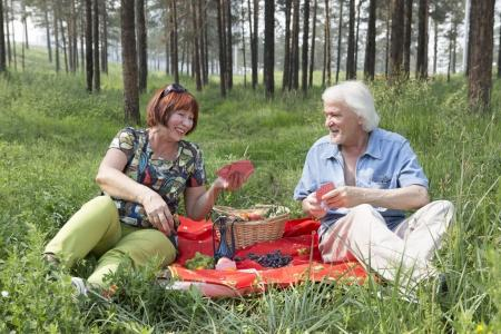 Elderly husband and wife had a picnic in the woods