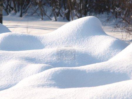 Fresh snow cover